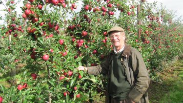 Andrew Jackson in the new Gala orchard