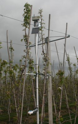 A weather station in a Conference Pear Orchard at East Malling Research
