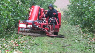 Cider apple harvester sweeping the apples up