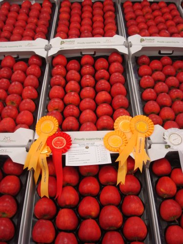 Show Fruit on display at The National Fruit Show