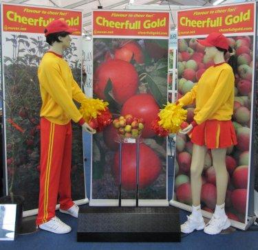CHEERFULL GOLD