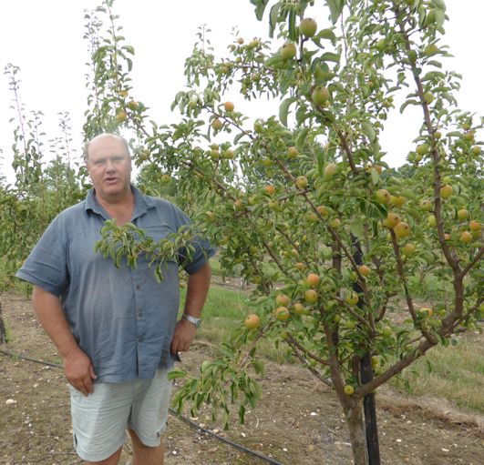 Robert Hinge in his Bambinella Orchard