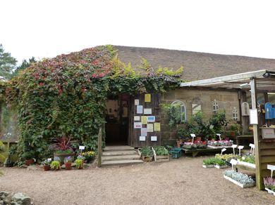 Great Park Farm - Farm Shop
