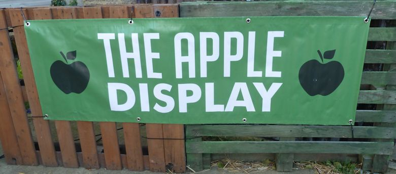 The Apple Display