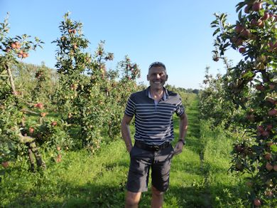 Mark Holden infront of the Gala orchard he planted in 1993