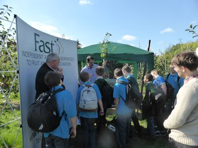 FAST explained how trees are managed for shape and cropping precocity