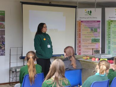 Feli Fernandez explains the apple breeding process to pupils from Hadlow School