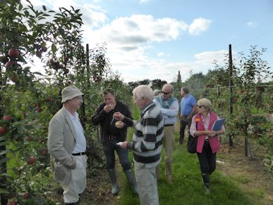 John Breach who located one of two BIFGA '21' trial orchards at Hadlow College