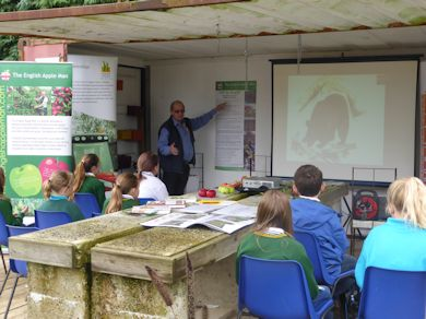 The Apple Man informs pupils from Hadlow School about the origin of the sweet apple